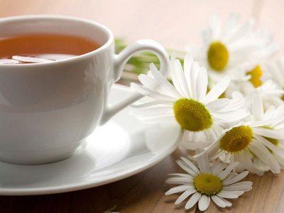 Camomilla (Camomile tea) di Katherine Mansfield