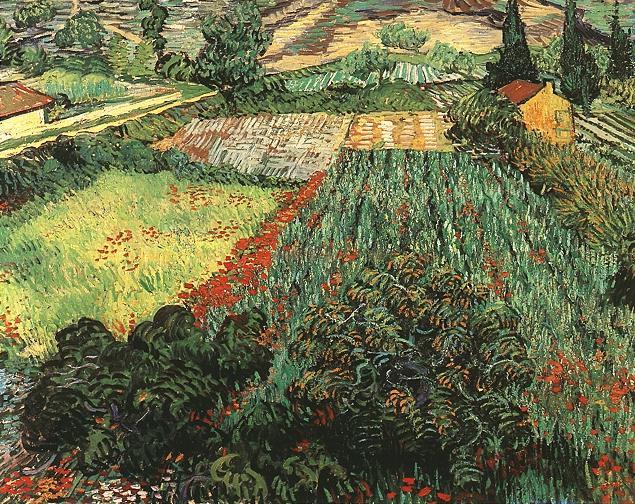 Campo con papaveri (Field with poppies), 1889; Olio su tela (71 x 91 cm)