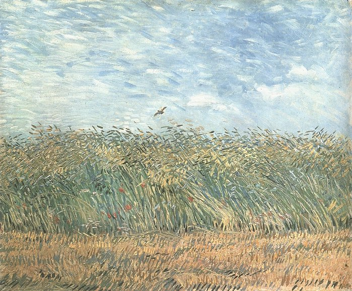 Campo di grano con pernice (Wheat field with a partridge) 1887; Olio su tela (34 x 65.5 cm)