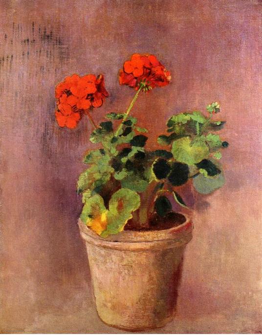 Il vaso di gerani