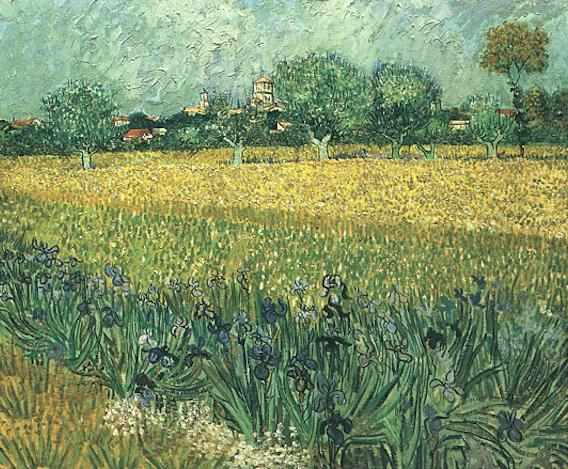 Veduta di Arles con fioritura di Iris in primo piano (View of Arles with irises in the foreground), 1888; Olio su tela (54.0 x 65.0 cm)