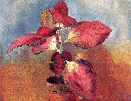 Begonia in un vaso Odilon Redon