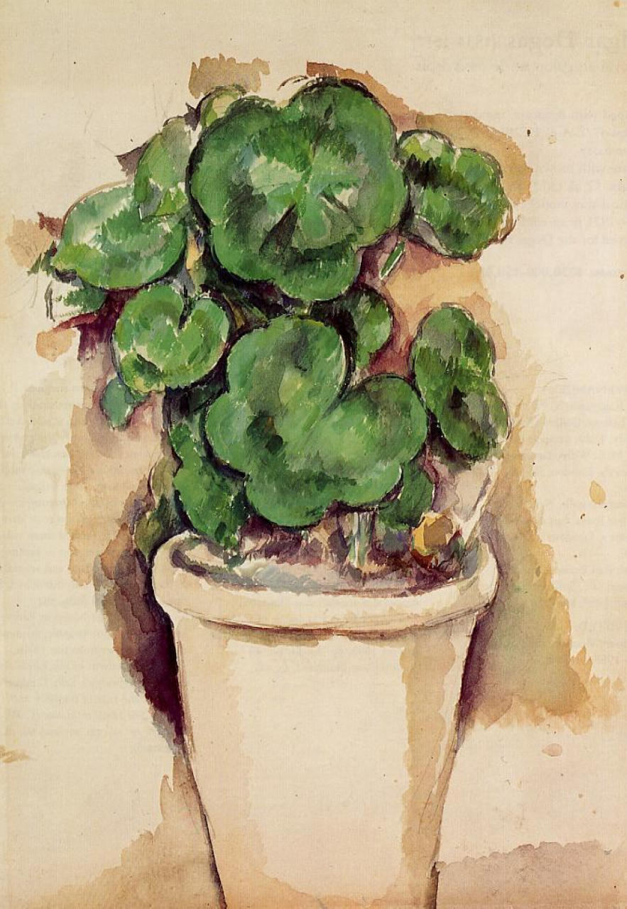 Vaso di gerani (Pot of geraniums), 1885; Matita e acquarello (35,5 x 24 cm)