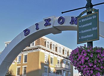 Dixon, città della petunia