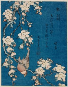 Weeping Cherry and bullfinch di Katsushika Hokusai