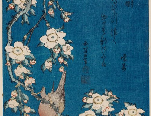 Katsushika Hokusai – Weeping Cherry and bullfinch