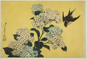 Hydrangea and Swallow, Katsushika Hokusai