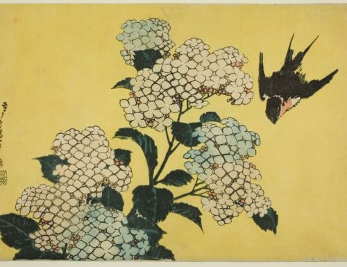 Katsushika Hokusai – Hydrangea and swallow