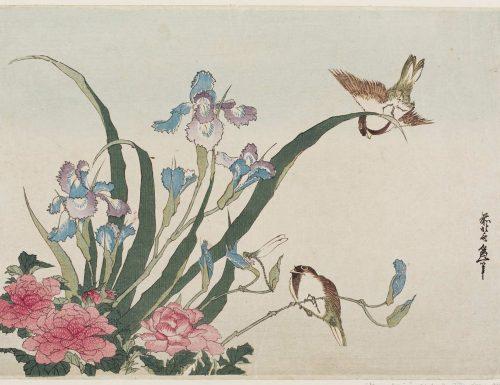 Katsushika Hokusai – Iris, peonies, sparrows and dragonfly