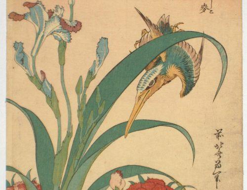 Kingfisher, irises and pinks – Katsushika Hokusai