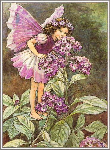 Fate dei fiori: Fata dell'eliotropio