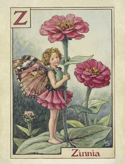 Fate dei fiori: Fata della zinnia
